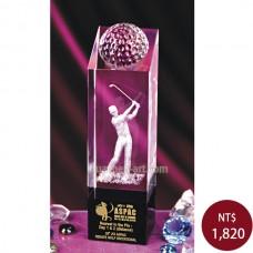 C911 高爾夫球獎盃